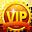 VIP Üye